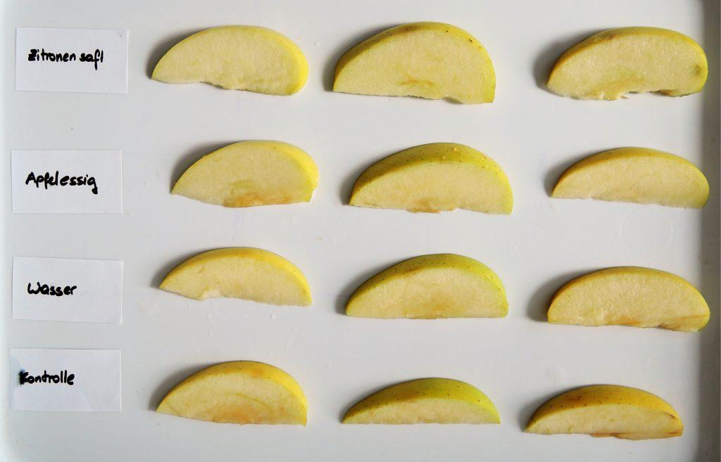 Apfelspalten für Bräunungsexperiment