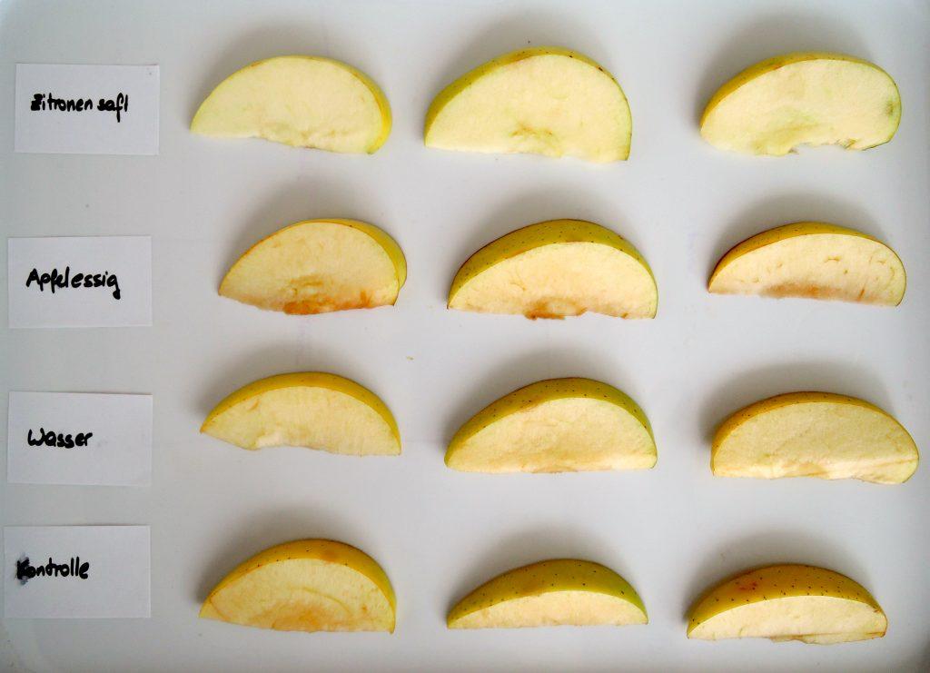Apfelspalten nach Bräunungsexperiment