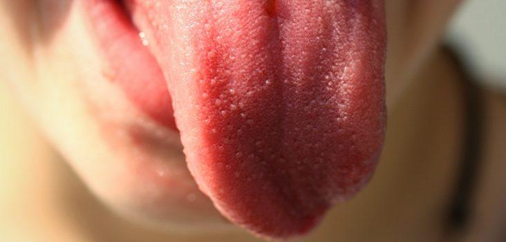 Bild: Die Zunge hat, anders als oft behauptet, keine einzelnen Regionen für die verschiedenen Geschmäcker. Es gibt keine Zungenlandkarte.