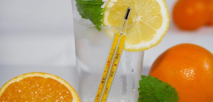 Vitamin C haltige Früchte Orange und Zitrone mit Glas
