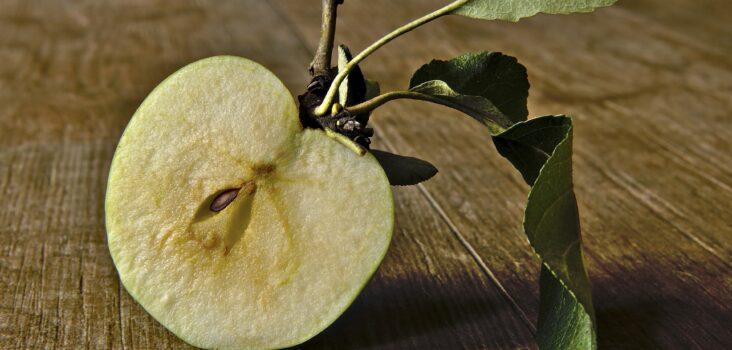 Aufgeschnittener Apfel, bei dem man Apfelkerne sieht